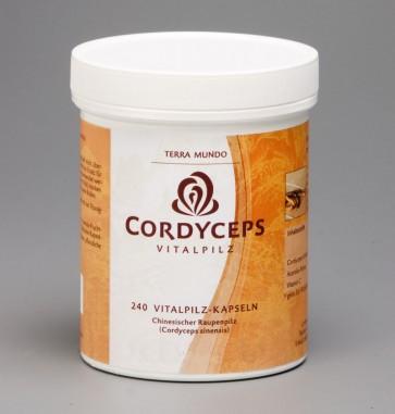Cordyceps Vitalpilz 240 Kapseln