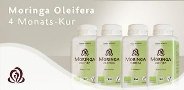 Moringa Oleifera Kur 480 Kapseln