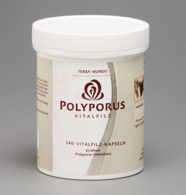 Polyporus Vitalpilz 240 Kapseln