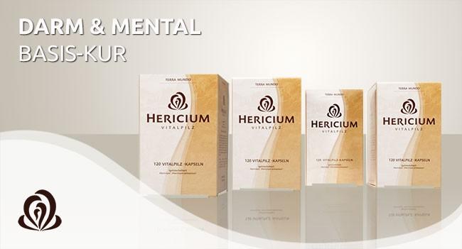 Vorschaubild: HERICIUM-Darm-Basis-Kur