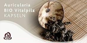 Auricularia BIO Vitalpilz Kapseln
